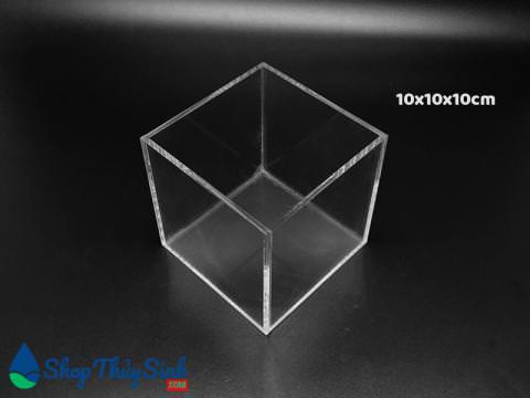 Bể cá mini chất liệu Acrylic dùng show cá cubic 10cm