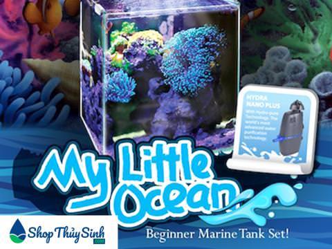 Bể cá mini dành cho hồ cá biển OF My Little Ocean