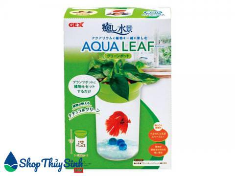 Bể cá mini tròn cho cá Beta Gex Aqua Leaf