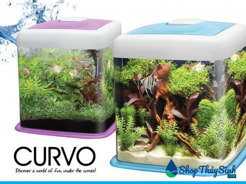 Bể cá mini vuông OF Curvo Tank 12 Liter