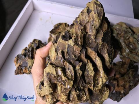 Đá Tiger loại đá làm bố cục thủy sinh phổ biến hiện nay