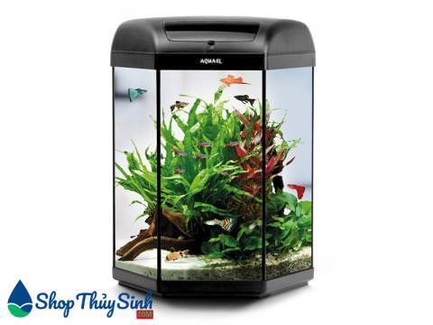Set bể cá mini hình lục giác cực đẹp Aquael Hexa Set Aquarium