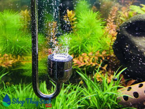 Tẩu sủi co2 chất liệu inox không gỉ bền và đẹp